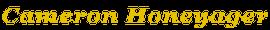 cameron logo 2